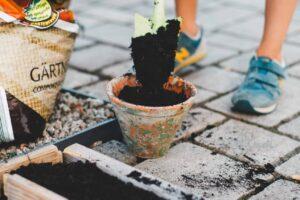 Gartenlust statt Gartenfrust – so gelingt rückenfreundliches Gärtnern. 7 Tipps!